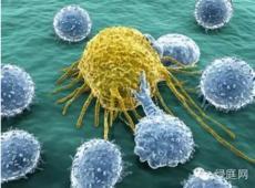 癌症治疗16个谎言!约翰霍普金斯大学辟谣